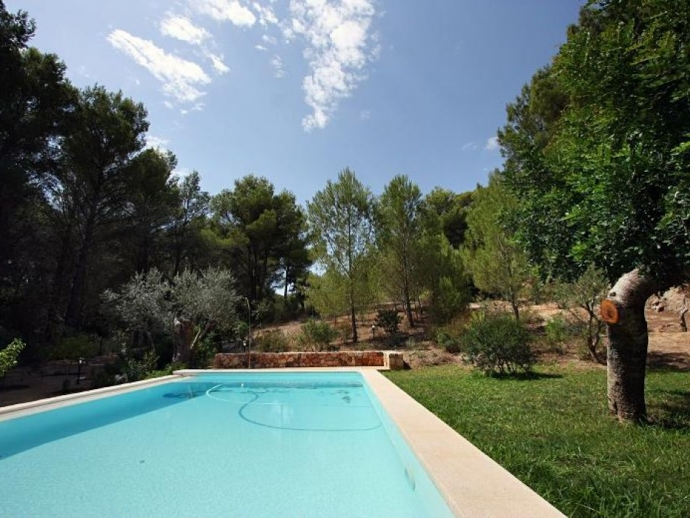 Pool / Garden Area